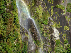 small_09_Milford_Sound_16